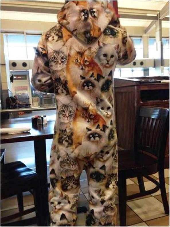 cestujúci s mačkami