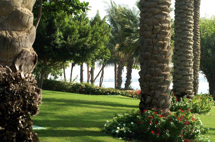 Dubaj pláže